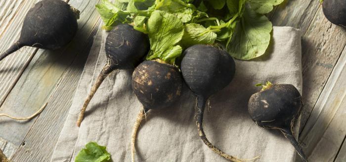 Le radis noir pour l'intestin irritable